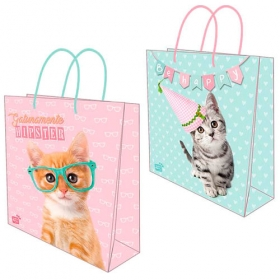 Studio Pets gift bag - random style