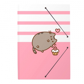 Pusheen Folder rubber a4  folders  rose collection