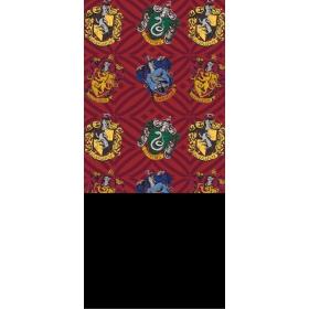 Harry Potter boy's chimney